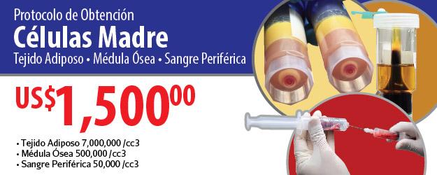 C.M. PROTOCOLO OBTENCION 30% WEB-01