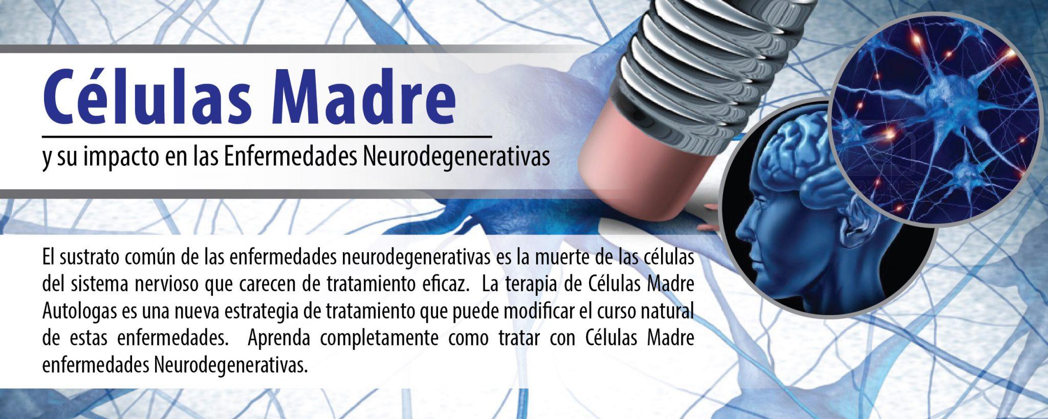 web-enfermedades-neurodegenerativas-01