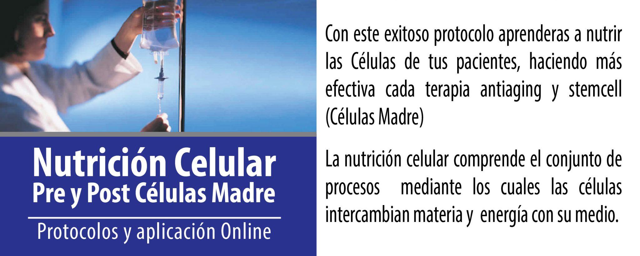 nutricion-celular