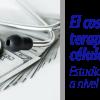 WEB EL COSTO DE LA TERAPIA